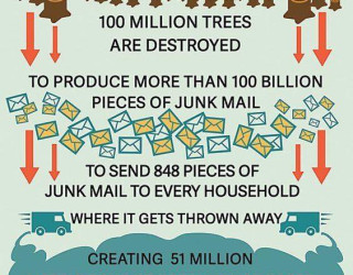 Important Videos - junk mail