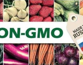 Important Videos - non GMO